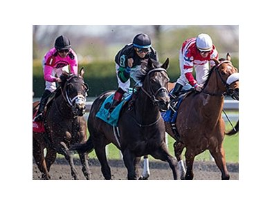 "Occasional View and Alan Garcia (center) take the Commonwealth Stakes.<br><a target=""blank"" href=""http://photos.bloodhorse.com/AtTheRaces-1/At-the-Races-2014/35724761_2vdnSX#!i=3175362783&k=BbqcpvX"">Order This Photo</a>"