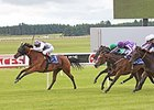 "Ambivalent won the 2013 Pretty Polly Stakes. <br><a target=""blank"" href=""http://photos.bloodhorse.com/AtTheRaces-1/At-the-races-2013/i-b5nwWGJ"">Order This Photo</a>"