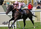 "The Fugue won the Prince of Wales's on June 18.<br><a target=""blank"" href=""http://photos.bloodhorse.com/AtTheRaces-1/At-the-Races-2014/i-drK6GB8"">Order This Photo</a>"