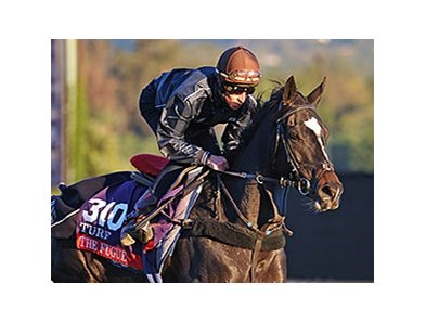 "The Fugue <br><a target=""blank"" href=""http://photos.bloodhorse.com/BreedersCup/2013-Breeders-Cup/Breeders-Cup/32986083_QMHXWK#!i=2874376450&k=QnV3RFh"">Order This Photo</a>"
