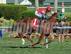 Parranda rolls to victory in the Florida Sunshine Millions Filly and Mare Turf.