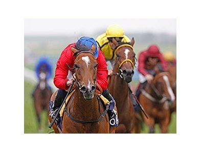 "Integral won the QIPCO Falmouth Stakes by 2 lengths.<br><a target=""blank"" href=""http://photos.bloodhorse.com/AtTheRaces-1/At-the-Races-2014/i-Rz4fXkX"">Order This Photo</a>"