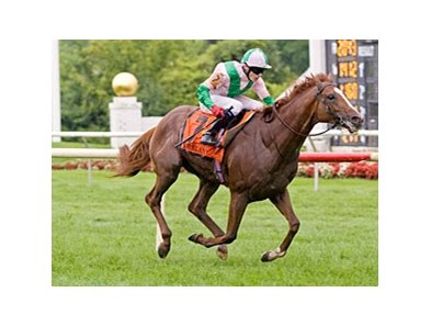 Cape Blanco won the Arlington Million on August 13.
