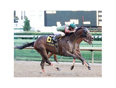 Island Bound rallies late to win the Winning Colors at Churchill Downs.