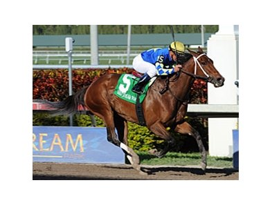 "Hilda's Passion is seeking her first grade I win.<br><a target=""blank"" href=""http://www.bloodhorse.com/horse-racing/photo-store?ref=http%3A%2F%2Fpictopia.com%2Fperl%2Fgal%3Fprovider_id%3D368%26ptp_photo_id%3D9455890%26ref%3Dstory"">Order This Photo</a>"