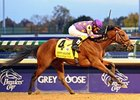 "Awesome Feather flies to victory in the Juvenile Fillies.<br><a target=""blank"" href=""http://www.bloodhorse.com/horse-racing/photo-store?ref=http%3A%2F%2Fpictopia.com%2Fperl%2Fgal%3Fprovider_id%3D368%26ptp_photo_id%3D9266752%26ref%3Dstory"">Order This Photo"