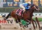 "Adios Charlie will carry top weight of 121 pounds in the Dwyer.<br><a target=""blank"" href=""http://www.bloodhorse.com/horse-racing/photo-store?ref=http%3A%2F%2Fpictopia.com%2Fperl%2Fgal%3Fprovider_id%3D368%26ptp_photo_id%3D9500907%26ref%3Dstory"">Order This Photo</a>"