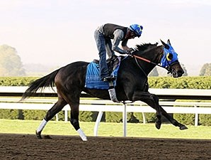 Ria Antonia - Keeneland Work, October 24, 2014.