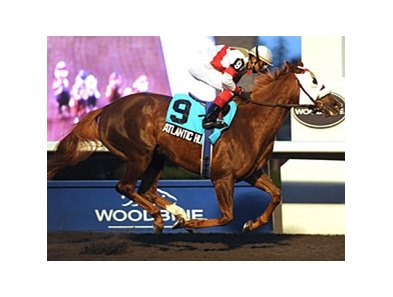 Atlantic Hurricane won the 2011 Bessarabian Stakes.