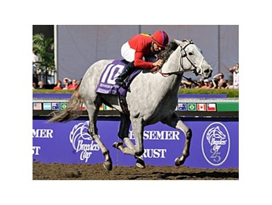 "Breeders' Cup Juvenile Fillies winner Stardom Bound is scheduled to sell at Fasig-Tipton Nov. 2. <br><a target=""blank"" href=""http://www.bloodhorse.com/horse-racing/photo-store?ref=http%3A%2F%2Fpictopia.com%2Fperl%2Fgal%3Fprovider_id%3D368%26ptp_photo_id%3D6471289%0D%0A%26ref%3Dstory"">Order This Photo</a>"