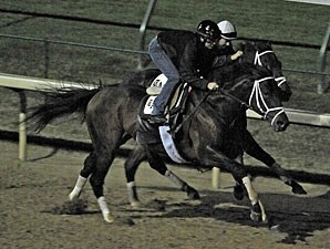 Quality Road and Aikenite at Churchill Downs.