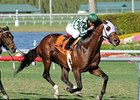 "El Crespo cruises in the Palm Beach Stakes.<br><a target=""blank"" href=""http://www.bloodhorse.com/horse-racing/photo-store?ref=http%3A%2F%2Fpictopia.com%2Fperl%2Fgal%3Fprovider_id%3D368%26ptp_photo_id%3D7901215%26ref%3Dstory"">Order This Photo</a>"