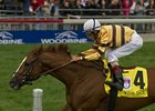 Wise Dan has the outside post for the Shadwell Turf Mile Stakes.