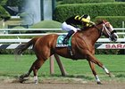"Pacific Ocean leads them home in the James Marvin.<br><a target=""blank"" href=""http://photos.bloodhorse.com/AtTheRaces-1/at-the-races-2012/22274956_jFd5jM#!i=1977435326&k=4PD9Xq2"">Order This Photo</a>"