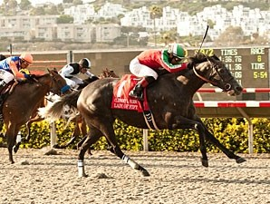 Lady of Fifty wins the 2013 Clement L. Hirsch.