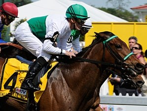Rainbow View wins the 2010 Gallorette.