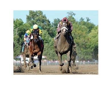Jackson Bend won the 2011 James Marvin Stakes.