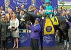"Zenyatta in the Winner' Circle after her Classic victory.<br><a target=""blank"" href=""http://www.bloodhorse.com/horse-racing/photo-store?ref=http%3A%2F%2Fpictopia.com%2Fperl%2Fgal%3Fprovider_id%3D368%26ptp_photo_id%3D8609368%26ref%3Dstory"">Order This Photo</a>"