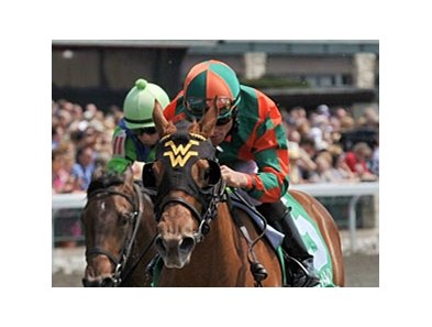 "Mary At the Cove was one of 5 2-year-old winners for Trainer Wesley Ward at Keeneland.<br><a target=""blank"" href=""http://photos.bloodhorse.com/AtTheRaces-1/at-the-races-2013/27257665_QgCqdh#!i=2467435868&k=pHSsk5p"">Order This Photo</a>"