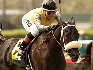 Great Hot wins the Torrey Pines Stakes.