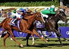 Breeders' Cup Winner Maram Retired