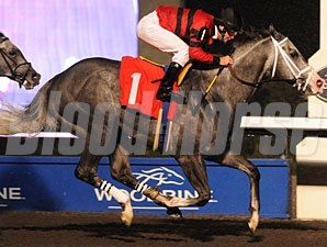 Smokey Fire wins the 2010 Mt. Sassafras.
