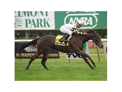 "Watsdachances makes her second start of the year in the Sands Point Stakes<br><a target=""blank"" href=""http://photos.bloodhorse.com/AtTheRaces-1/at-the-races-2012/22274956_jFd5jM#!i=2137735722&k=4JgSrph"">Order This Photo</a>"