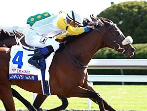 Java's War Moved to Trainer Tagg's Barn