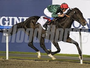 Mendip wins the 2011 Maktoum Challenge.