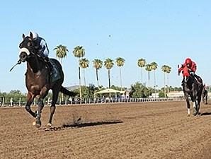 Lazy Daisy May ATBA Fall Sales Stakes Fillies Division.