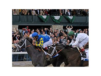 "2008 Blue Grass winner Monba returns to Keeneland for the April 19 Ben Ali Stakes. <br><a target=""blank"" href=""http://www.bloodhorse.com/horse-racing/photo-store?ref=http%3A%2F%2Fgallery.pictopia.com%2Fbloodhorse%2Fgallery%2FS648280%2Fphoto%2F4155539%2F%3Fo%3D0"">Order This Photo</a>"