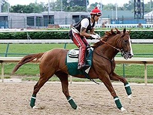 California Chrome - Churchill Downs