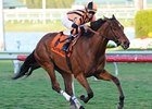 Little Mike won the 2011 Canadian Turf by 1 1/2 lengths.