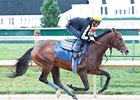 Bodemeister to Skip Haskell; Hansen Likely