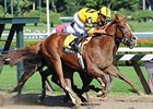 "Backtalk will try to remain undefeated in the Hopeful.<br><a target=""blank"" href=""http://www.bloodhorse.com/horse-racing/photo-store?ref=http%3A%2F%2Fpictopia.com%2Fperl%2Fgal%3Fprovider_id%3D368%26ptp_photo_id%3D8375381%26ref%3Dstory"">Order This Photo</a>"