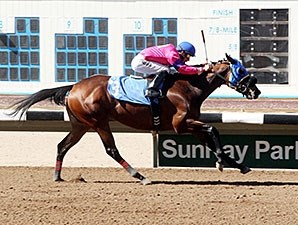 Contend wins the 2014 Budweiser Allowance Stakes.
