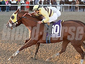 Classic Point wins the 2014 Go for Wand.