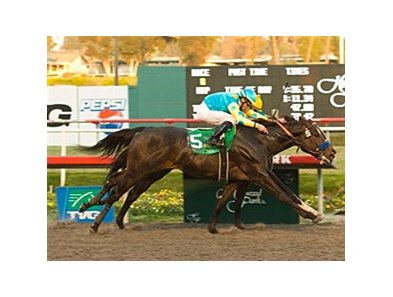 Pioneerof the Nile nosed out I Want Revenge in the CashCall Futurity Dec. 20 at Hollywood Park.