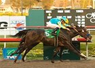 "Pioneerof the Nile holds off I Want Revenge to take the CashCall Futurity.<br><a target=""blank"" href=""http://www.bloodhorse.com/horse-racing/photo-store?ref=http%3A%2F%2Fpictopia.com%2Fperl%2Fgal%3Fprovider_id%3D368%26ptp_photo_id%3D7146565%26ref%3Dstory"">Order This Photo</a>"