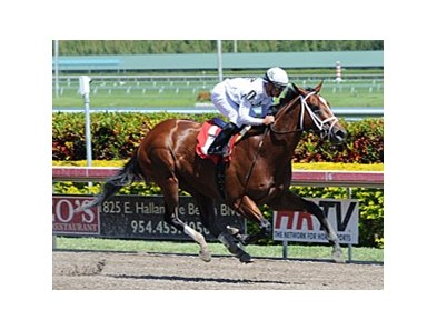 Gemologist cruises to victory at Gulfstream Park.