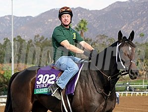 Hardest Core - Breeder's Cup, October 30, 2014