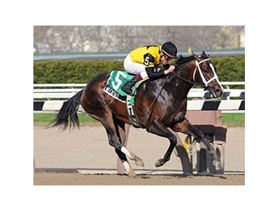 "Mr. Fantasy won the Withers in 2009.<br><a target=""blank"" href=""http://www.bloodhorse.com/horse-racing/photo-store?ref=http%3A%2F%2Fpictopia.com%2Fperl%2Fgal%3Fprovider_id%3D368%26ptp_photo_id%3D8040644%26ref%3Dstory"">Order This Photo</a>"