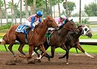 Firing Line, Dortmund in Los Al Rematch?