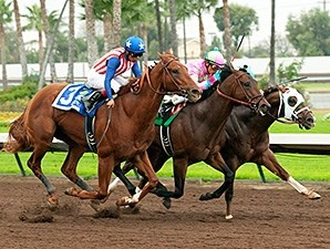 Dortmund wins the 2014 Los Alamitos Futurity.
