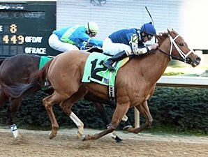 Seeking Ms Shelley wins the Spring Fever Stakes.