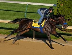Pioneerof the Nile Sizzles at Churchill