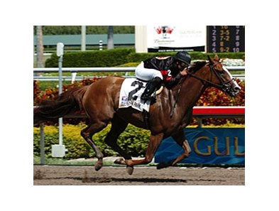 "Sugar Swirl seeks her first grade I victory in the Humana Distaff Stakes.<br><a target=""blank"" href=""http://www.bloodhorse.com/horse-racing/photo-store?ref=http%3A%2F%2Fpictopia.com%2Fperl%2Fgal%3Fprovider_id%3D368%26ptp_photo_id%3D4024847%26ref%3Dstory"">Order This Photo</a>"