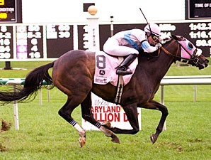 Pocket Patch wins 2011 Maryland Million Turf.