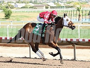 L. A. Weekend wins the 2014 Coyote Handicap.