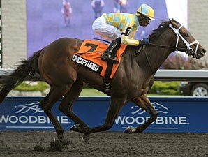 Uncaptured wins the 2012 Clarendon.